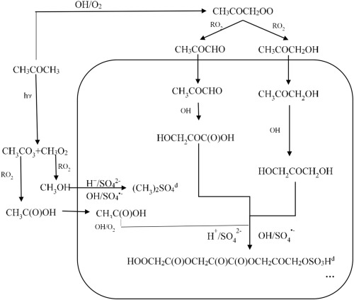 Proposed mechanism for the formation of organic sulfate in the aerosol phase.jpg