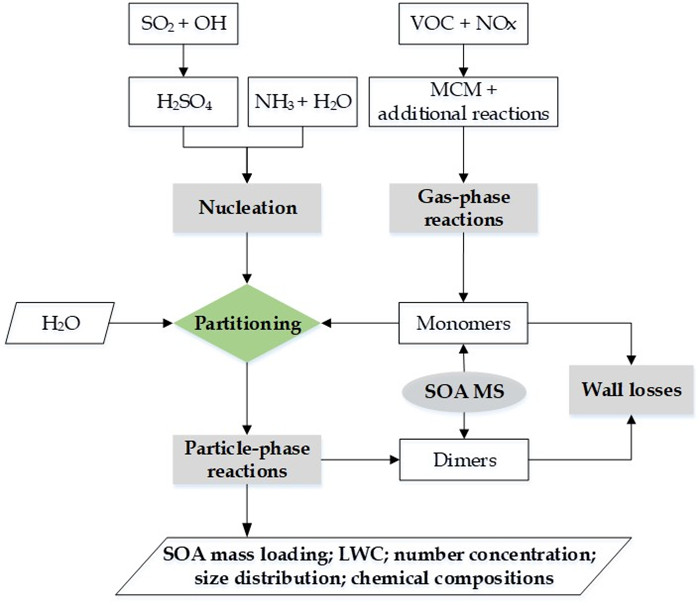图2. CSVA模式的整体框架