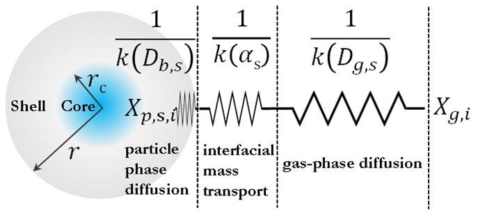 图1. 核-壳结构的单颗粒SOA的传质示意图